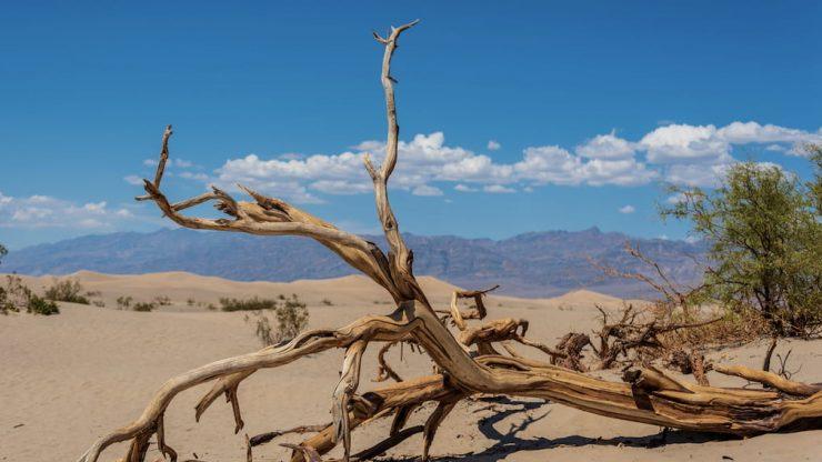 Prema podacima WMO-a, trenutni rekord za najvišu izmjerenu temperaturu na Zemlji drži Dolina smrti s 56.7°C izmjerenih 10. srpnja, 1913.